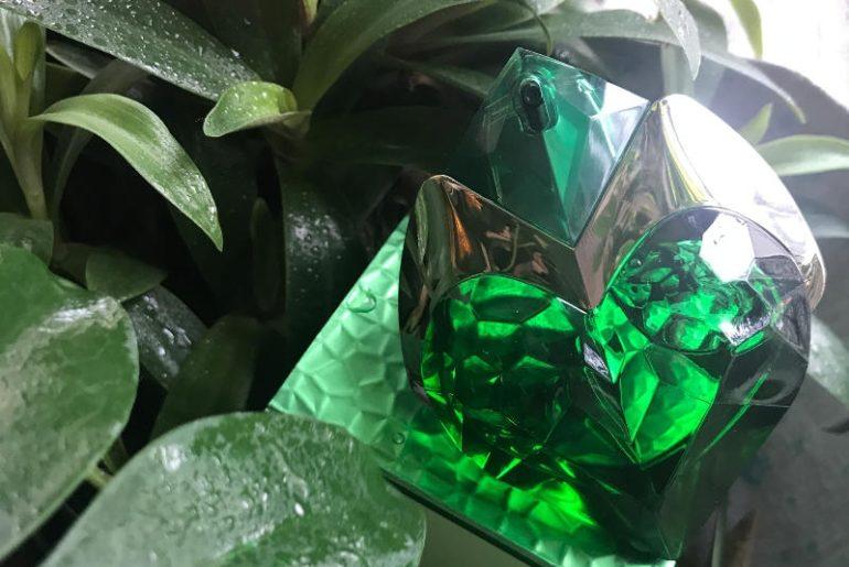 Aura Thierry Mugler to zapach dla kobiet, który ma podwójne serce. Jest zielony, ale i animalistyczny, bardzo kobiecy i zmysłowy z dużą dawką wanilii i zielonych nut